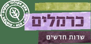כרמלים שדות חדשים – אסטרטגיה של שיווק באינטרנט